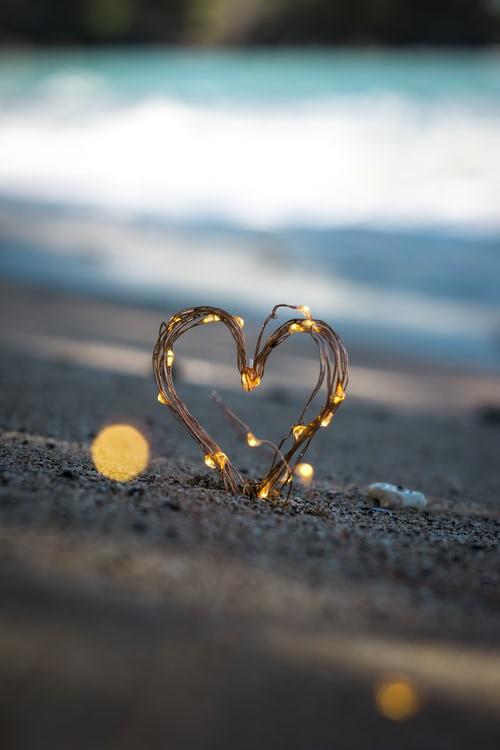 photo 1518568814500 bf0f8d125f46 - Apakah Maksud Disebalik Perkataan Cinta?